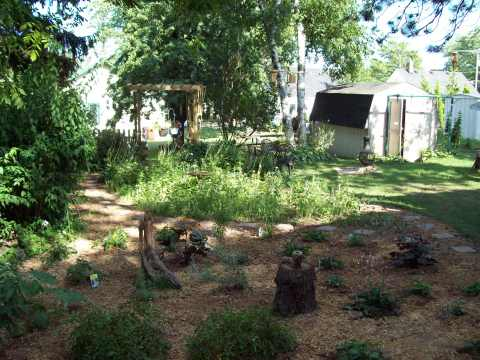 Garden full view