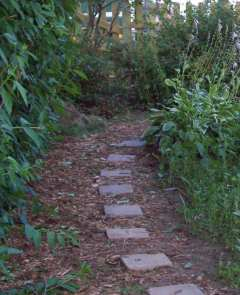 Path with stones